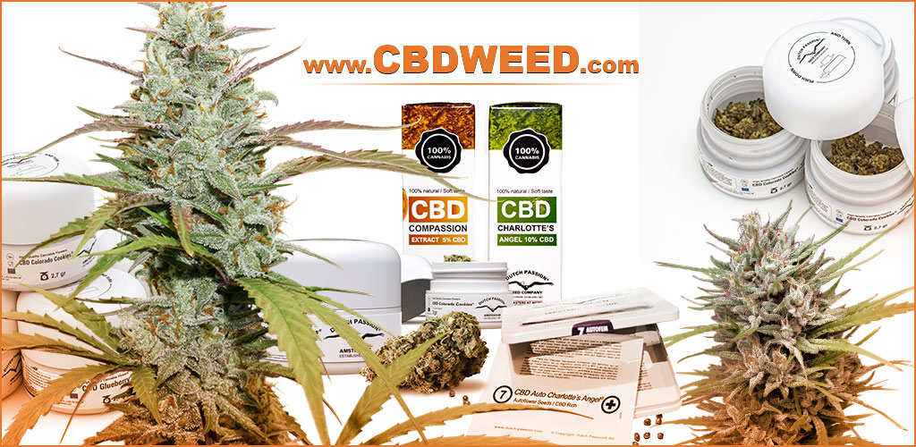 weedstockers-cbd-weed