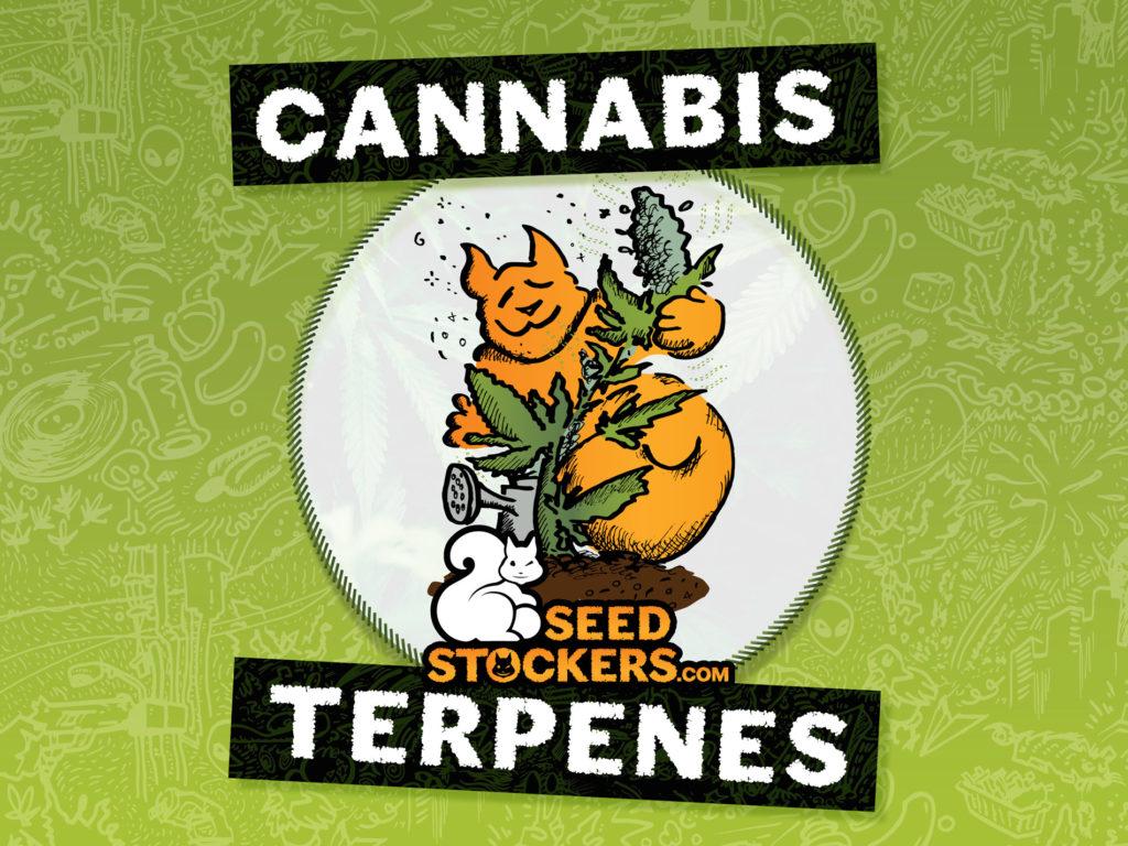 terpenes, Weedstockers