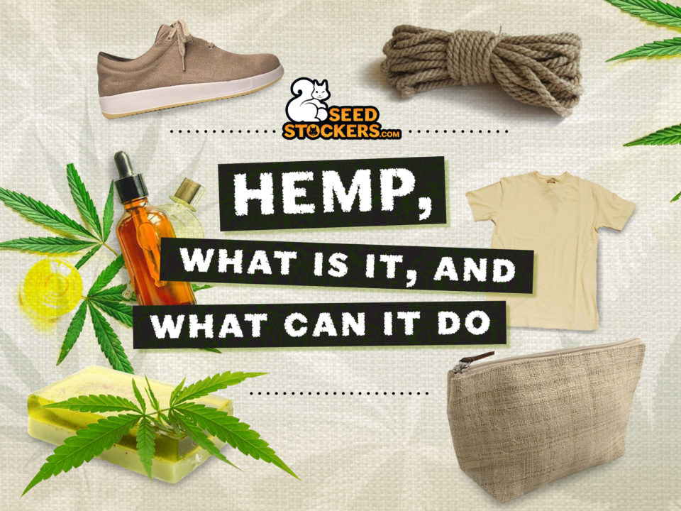 hemp, Weedstockers