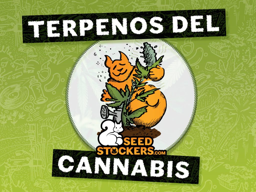 terpenos, Weedstockers