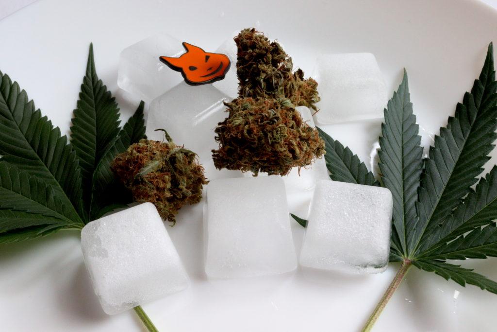 congelar, Weedstockers