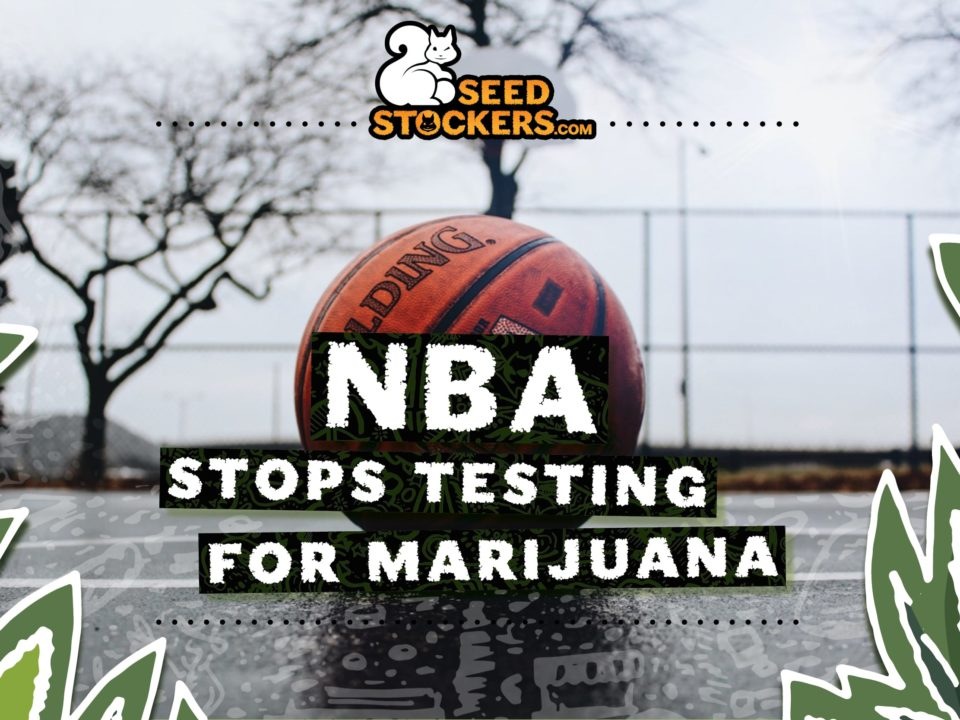 NBA stops testing for marijuana