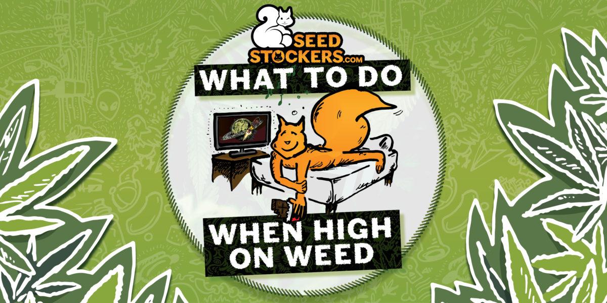 subidón, Weedstockers