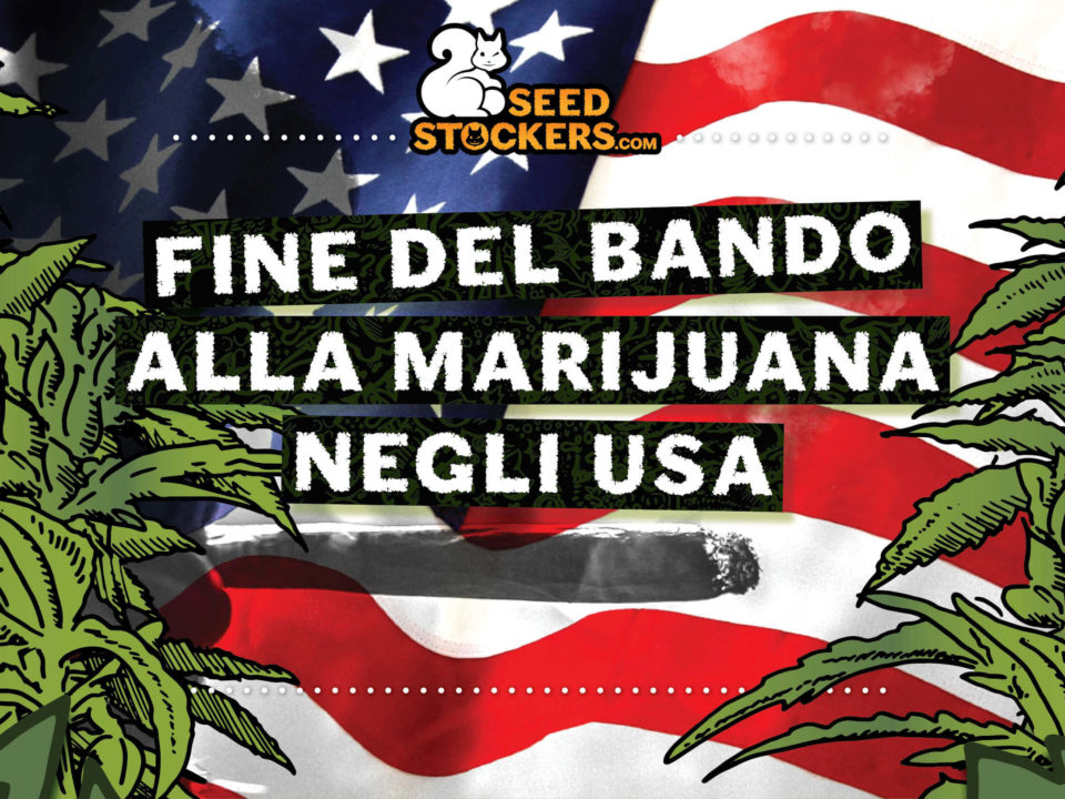 fine del bando alla marijuana negli usa