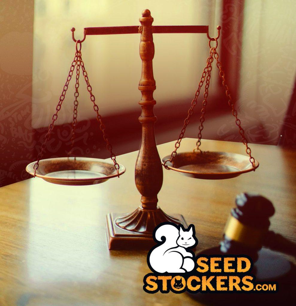 marijuana legalization, Weedstockers