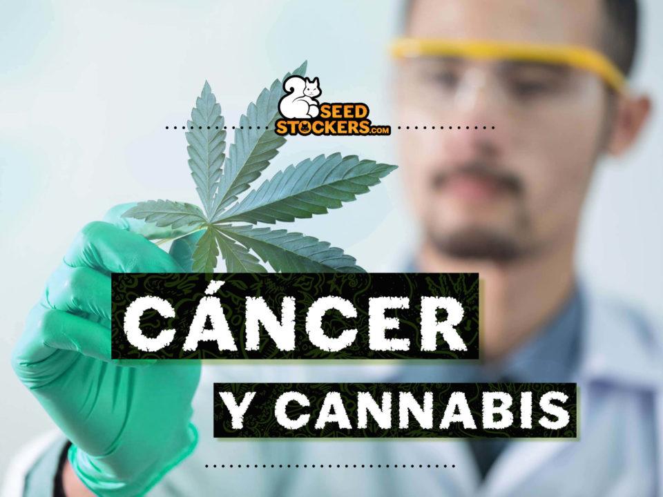 cáncer, Weedstockers