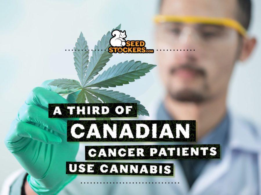 cancer, Weedstockers