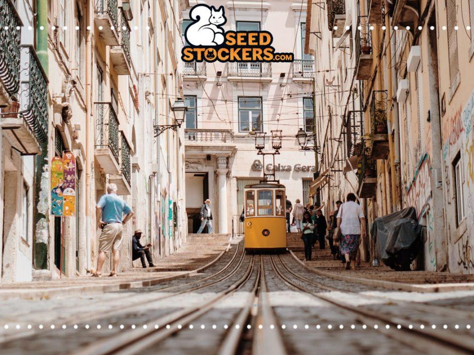 portugal, Weedstockers