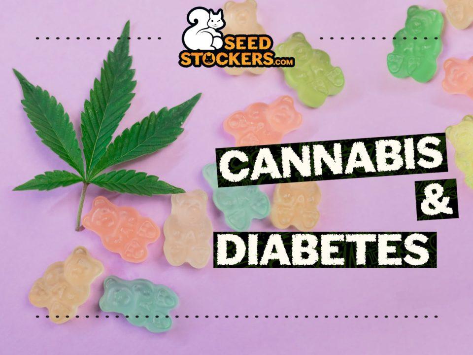 cannabis-diabetes