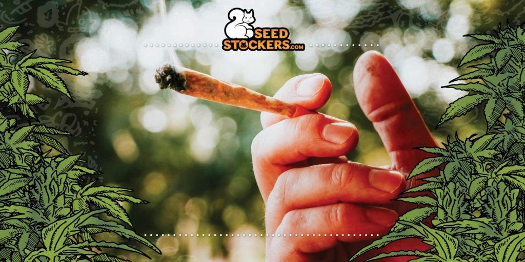 effects, Weedstockers