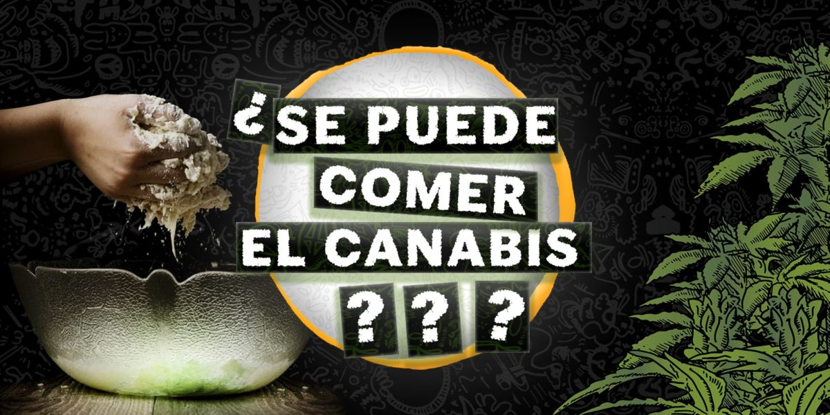comer cannabis, Weedstockers