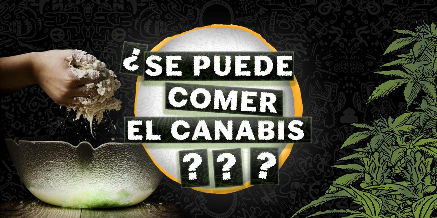 se puede comer el cannabis