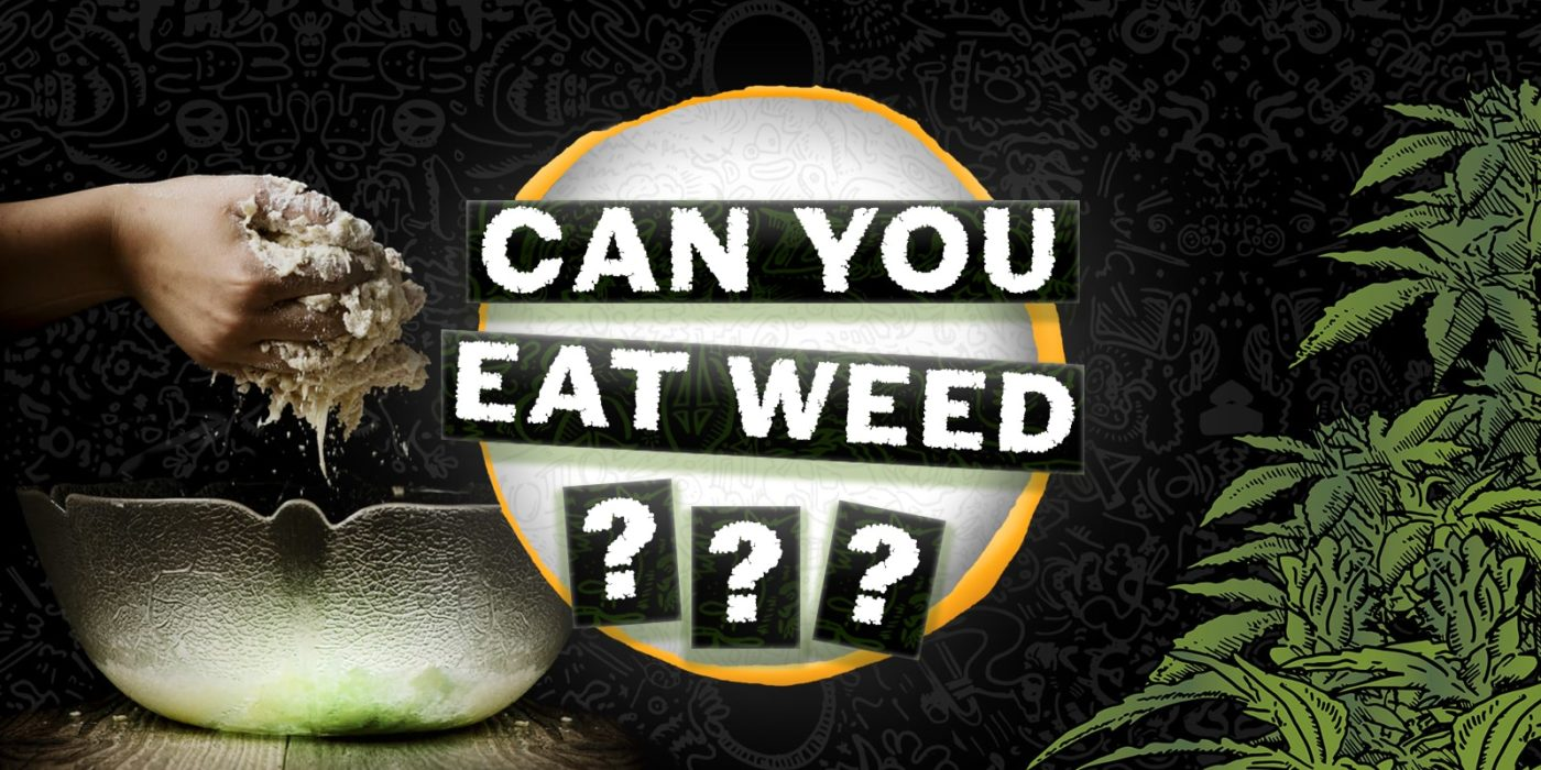 can you eat weed