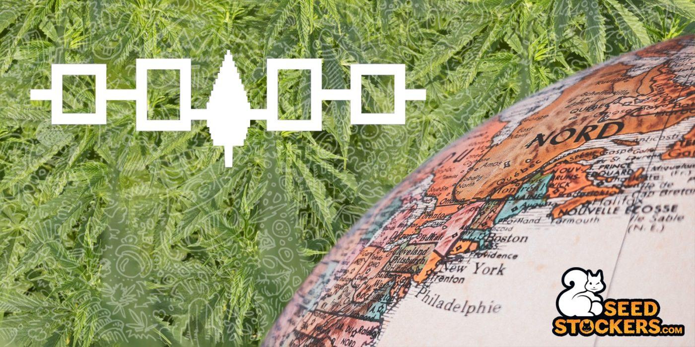 tribu, Weedstockers
