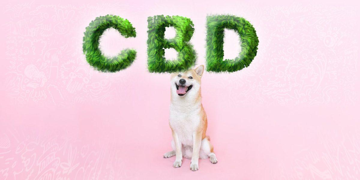 CBD for pets, Weedstockers